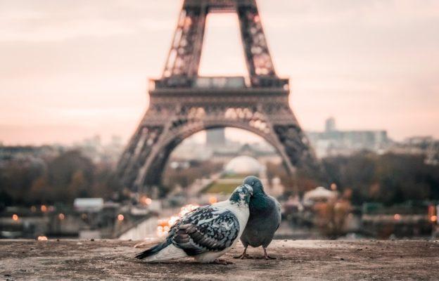 voyage de noce à paris